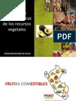 FUNCIONES GEOECONÓMICAS DE LOS RECURSOS NATURALES