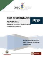Guia Orient Ac i on Competencias Basic as Men