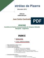 Informe 2011 J.C. Caminatta (AVACAM) - Shale Oil & Gas - Neuquen Argentina