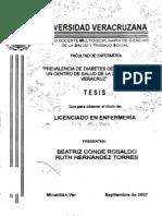tesis-0279