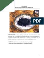 Petrologia y Genesis de Minerales
