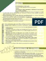 programma amministrativo Delebio 2009-2014 lista Ioli