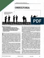 Consultoria Artigo RAE