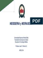 Neisseria y Moraxella 2014 [Modo de Compatibilidad]