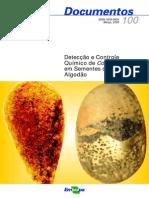 Colletotrichum Em Sementes de Algodao e Soja