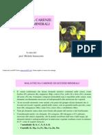 Malattie Da Carenze Ed Eccessi Minerali PDF