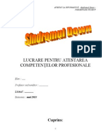 Documentatie HTML Model