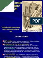 7150591 Articulaciones MS y Miembro Inferior I Dr Sandoval