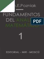 40325139 Fundamentos Del Analisis Matematico 1 POZNIAK