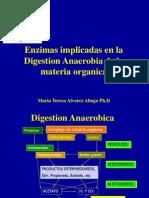 Digestion Anaerobica - Enzimas