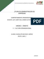 Ensayo Cultura Organizacional Gcmj Lamd2