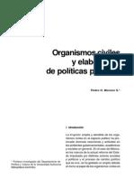 U4-Organiscivilesyelabdepolit.PedroMoreno