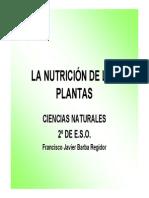 Ppt Alimentacion de Las Plantas