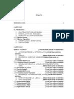 Tesis Ing de Detalle en Planta ARU SWS