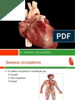 ii-sistemacirculatrio-121005073642-phpapp01.pdf