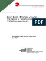 Strategic Litigation Short Guide (2)