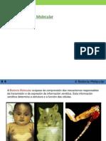 Nocións de Bioloxía Molecular