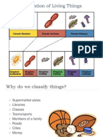 classification-notes
