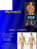 Introduction of Myology