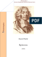 Spinoza Pimbe