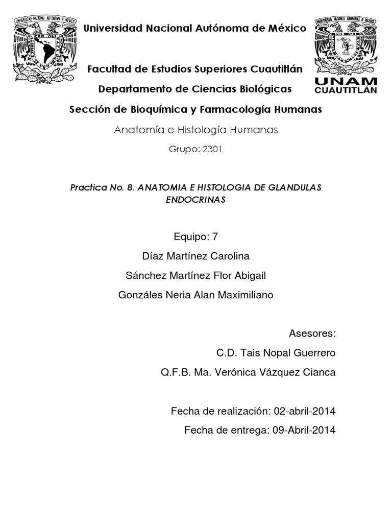 Famoso Glándulas Humanas Colección - Anatomía de Las Imágenesdel ...