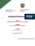 3 Cuadro de Analisis de Los Campos Formativos