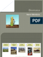 Biomasa MM