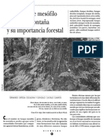 Bmm Importancia Forestal