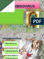 203688882 Enfermedades Clinicas Sarampion Pptx
