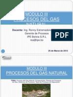 149790534 Modulo III Proceso de Gas Natural y Plantas