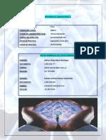 Informe Fisica Lab 1 Grupo 329