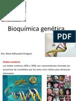 ácidos nucleicos nicte