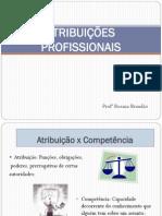 ATRIBUIÇÕES PROFISSIONAIS _completa