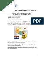 Informe Fiebre Amarilla en Paraguay