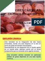 Diapositivas Emulsiones Carnicas