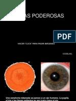 FRUTAS_PODEROSAS