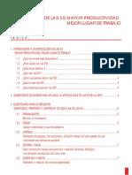 Metodologa de las 5s - Mayor productividad - Mejor lugar de trabajo.pdf
