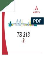 TS313B-en