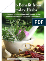 How to Benefit From Everyday Herbs