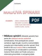Maduva Spinarii Proiect Fiziologie