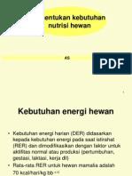 NUTRISI HEWAN 2