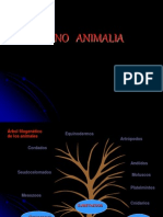 INTRO-METAZOARIOS.pdf