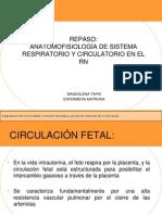 anatomofisiologiadelsistemacirculatorioyrespiratorio