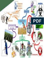 MAPA MENTAL EDU. AMBIENTAL Nº 2 PESTICIDAS