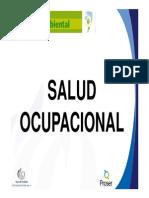 Formacion Basica en Salud Ocupacional