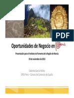 Presentación Gabriela García_Oportunidades de Negocio en Perú