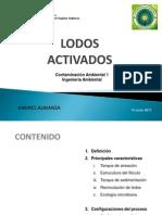 Lodos Activados1