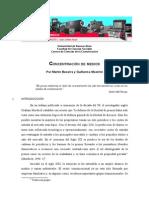BECERRA concentracion de medios.pdf
