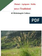 Natura e Tradizioni Di San Biagio Platani Di Michelangelo Caldara