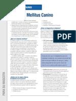 GuíaDeCuidado_DiabetesMellitusCanino